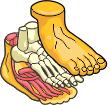 mini-foot.png