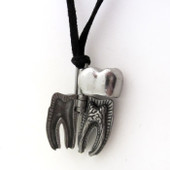 human tooth anatomy locket necklace in open position