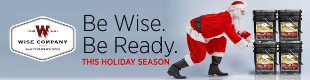 wise-holiday-banner.jpg