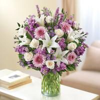 Lavender & White Sincerest Sorrow