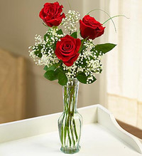 3 Stems Red Love's Embrace Roses