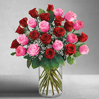 Ultimate Elegance 2 Dozen Long Stem Pink and Red Roses