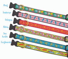 Coastal Dog Collar
