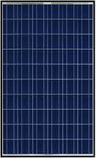 Trina Solar 250 Poly