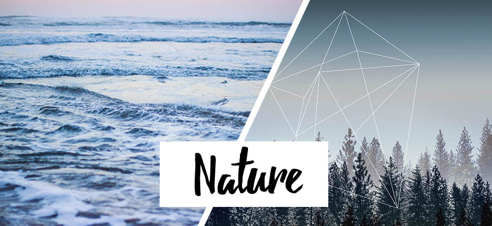 nature-carousel.jpg