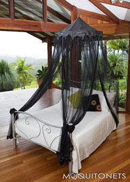 small_mosquito-net_temple-poly-black2.jpg