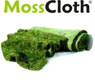 Live Moss Rolls