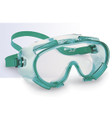 Chemical Clear Monogoggle