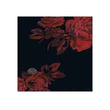 Wild Rag Charmeuse Prints Midnight Rose