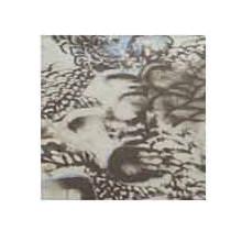 Wild Rag Charmeuse Prints Pheasant