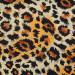Charmeuse Silk Wild Rags #7 - Cheetah