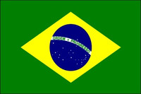 Brazil (UN OAS) Outdoor Flags