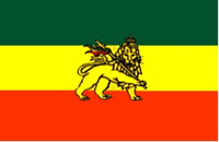 Ethiopia with Lion Outdoor Flag