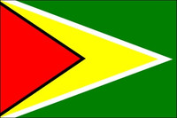 Guyana (UN OAS) - Indoor Flags