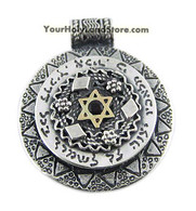 Silver and Gold Protection Pendant with Star of David