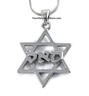 Kabbalah Star of David Prosperity Necklace