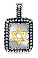 Silver and Gold Star of David Pendant