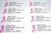 Custom Mailing Labels with Pink Ribbon