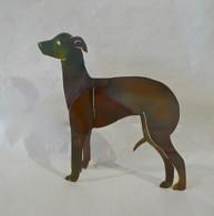 DAWN MICKEL Italian Greyhound