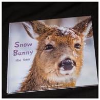 Snow Bunny - the Deer