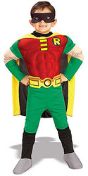 Robin Costume, Boys Muscle Chest Superhero - Halloween Costume