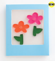 Daisy Flowers Mini GelGems Greeting Card
