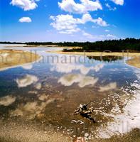 Anegada Salt Ponds