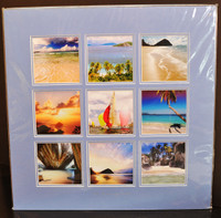 The British Virgin Island Collection 9