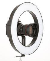 Falconeyes 銳鷹DVR-384DVC 23W 環形補光燈(38cm)