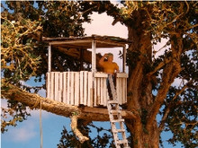 HO-SCALE TREE HOUSE