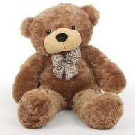 Fluffy Brown Teddy Bear