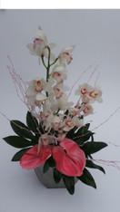 Pastel Orchid design