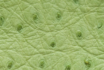 Ostrich Skin Patte Green