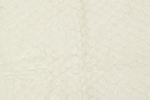 Arapaima Skin Cream