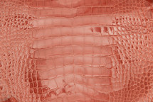 Alligator Skin Belly Glazed Pink - 25/29 cm