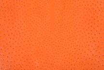 Ostrich Skin Tangerine