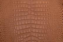 Alligator Skin Belly Matte Cognac 30/34 cm Grade 4