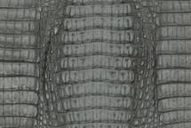 Caiman Skin Hornback Matte Grey