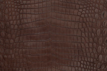 Nile Crocodile Skin Belly Matte Kango