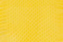 Whipsnake Skin Glazed Lemon