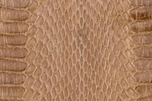 Whipsnake Skin Glazed Taupe