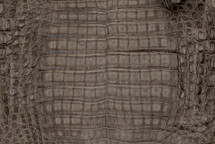 Caiman Skin Belly Matte Grey/Brown - XL