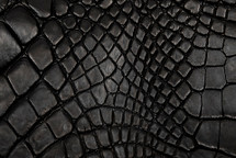 Alligator Skin Leg Matte Black - XL