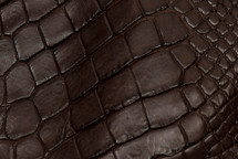 Alligator Skin Leg Matte Brown - XL