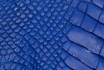 Alligator Skin Leg Matte Cobalt - XL
