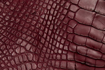 Alligator Skin Leg Matte Burgundy - XL