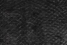 Arapaima Skin Inverted Black - Small