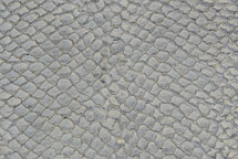 Arapaima Skin Inverted Grey