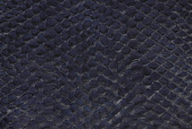 Arapaima Skin Inverted Navy