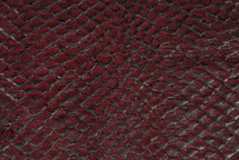 Arapaima Skin Inverted Wine
